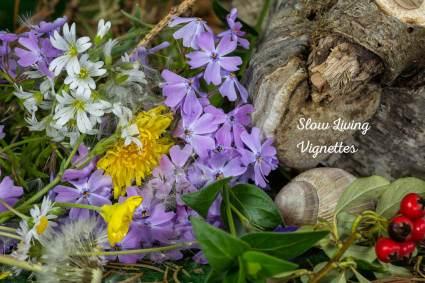 Managing at wild garden at PumpjackPiddlewick