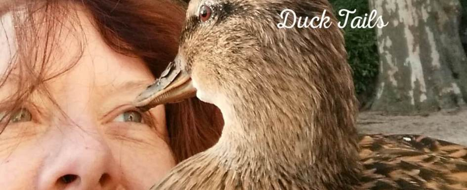We discover that Ducks are Empathic at PumpjackPiddlewick
