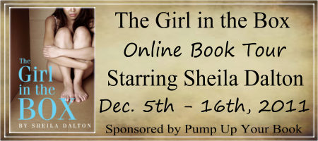 Girl In the Box Banner
