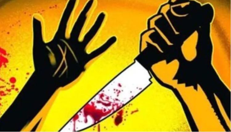 nashik-crime-video-of-deadly-attack-on-two-brothers-in-nashik-blood-bath-on-road