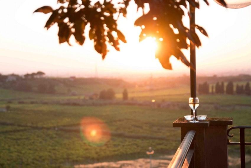 Merumalia, frascati, castelli romani, roma, biologico, vino dei castelli, vino biologico