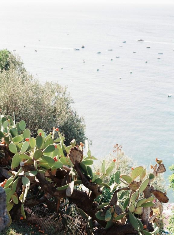 Prickly pears, Positano
