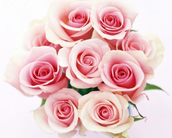 bouquet con rose rosa