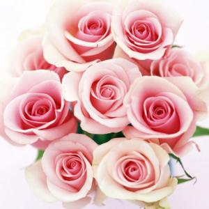bouquet con rose rosa