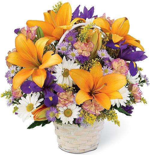 cestino con lilium arancio margherite e iris blu