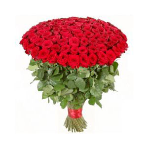 100 rose rosse online