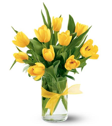 consegna a domicilio tulipani gialli online