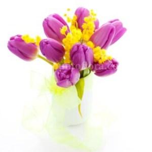 tulipani fuchsia e mimosa