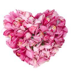 Composizione a forma di cuore di orchidee