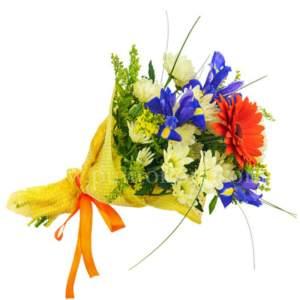 piccolo bouquet con gerbere ed iris blu