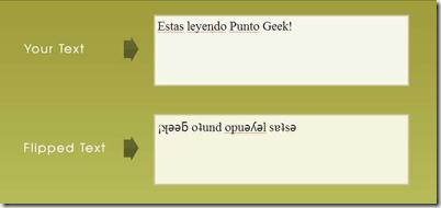flip text punto geek