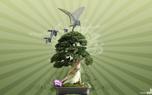 bonsai_tree_by_iheb003