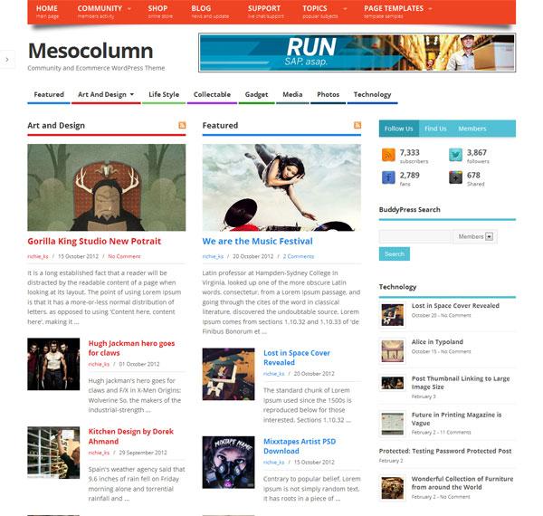 mesocolumn-wp-theme