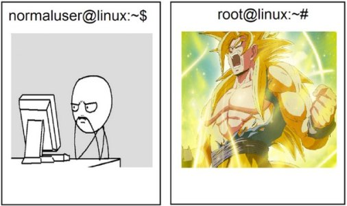 Usuario común vs. root [Humor]