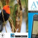 App para identificar aves de la Argentina desde el celular
