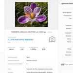 Esta web te muestra los datos EXIF y Lightroom de cualquier fotografía sin subirla