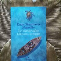 Le tartarughe tornano sempre di Enzo Gianmaria Napolillo