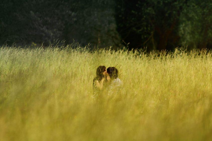 amore e campi