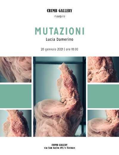 CRUMB GALLERY Firenze:  MUTAZIONI - Lucia Damerino