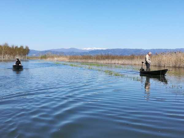 La Via Francigena lungo le aree naturalistiche del Lago di Sibolla e del Padule di Fucecchio