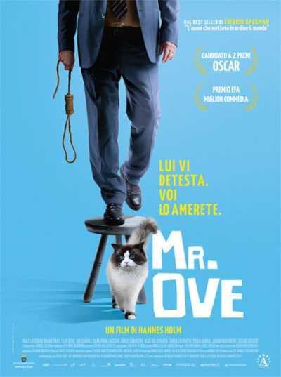 """Il film del giorno: """"Mr. Ove"""" (su Cielo)"""