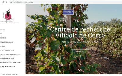 Centre de Recherche Viti-vinicole Insulaire