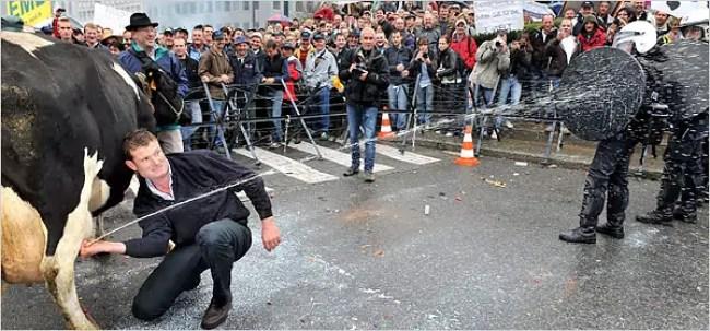 European Farmers Protest