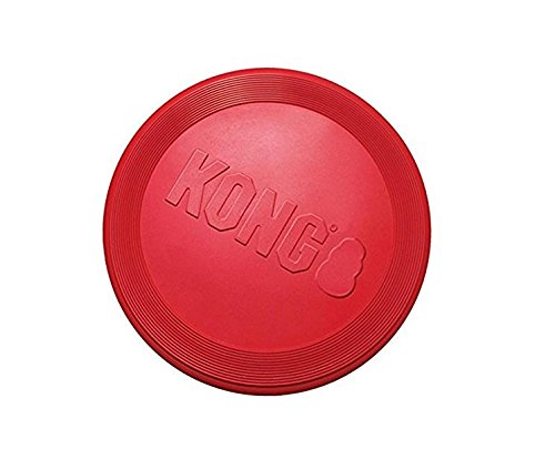 gift for active dog, image of red rubber toy by Kong