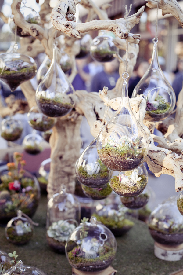 Glass baubles transformed into miniature succulent terrains at 3rd Street Promenade in Santa Monica, Los Angeles.