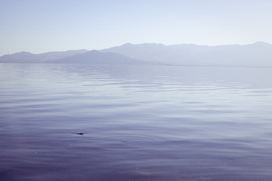 Calm waters at the Salton Sea.