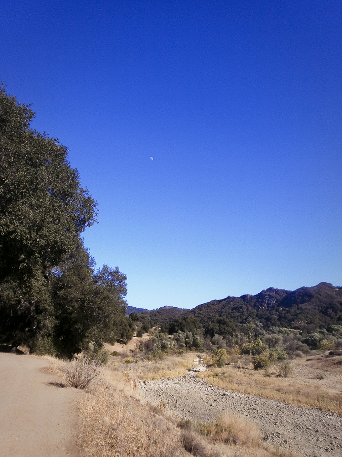 View of the mountains on the hike at Malibu Creek.