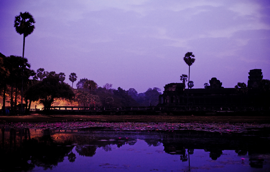 Silhouette across the lotus pond at Angkor Wat at dawn, Cambodia.
