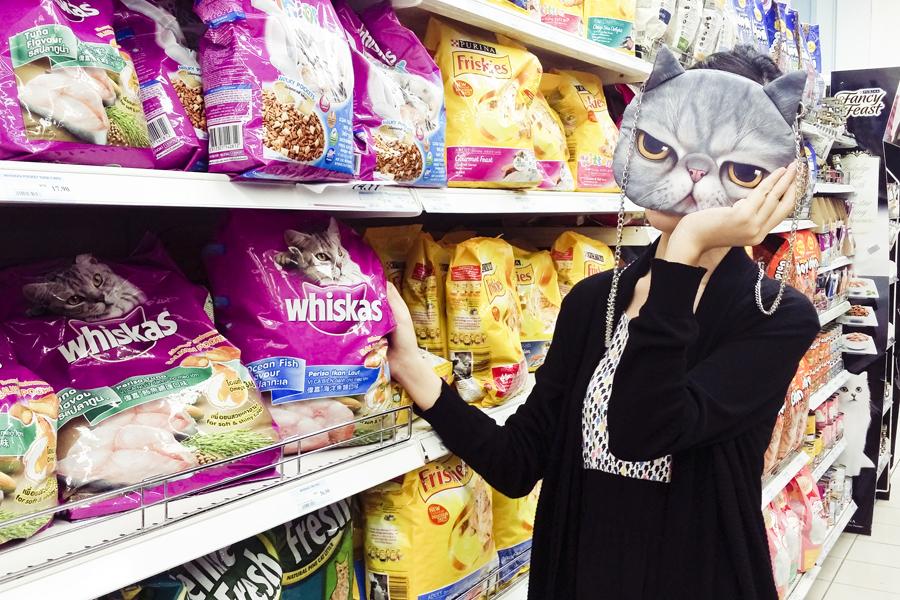 Browsing cat food.