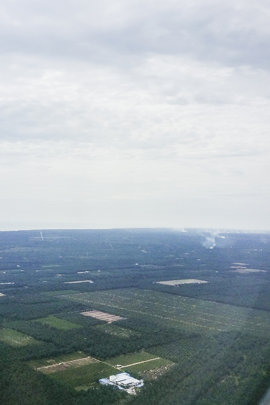 Smoky spot among greens from the plane.