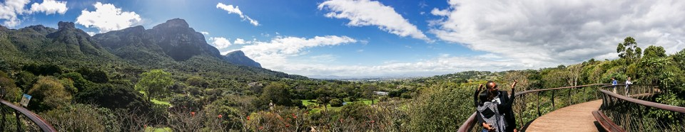 View from the Centenary Tree Canopy Walkway at Kirstenbosch, South Africa.