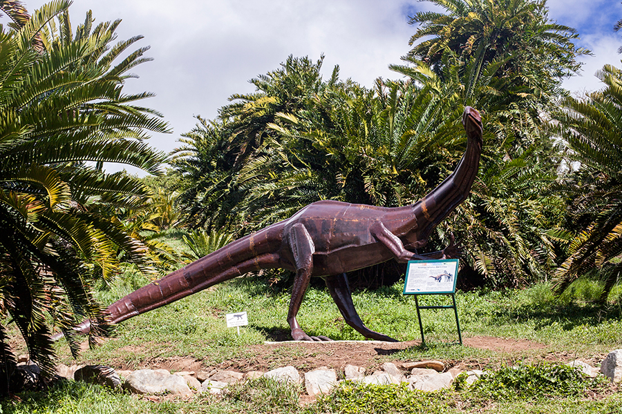 Dinosaurs and cycads at Kirstenbosch, South Africa.