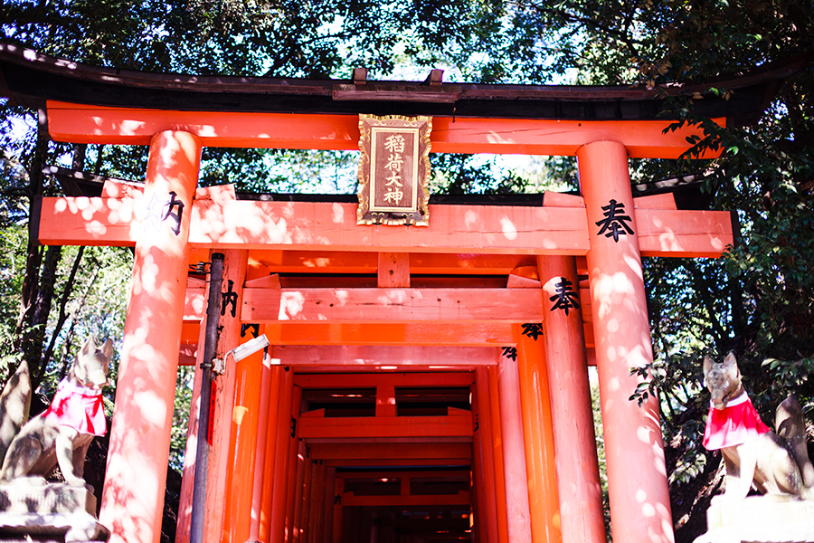 Torii at Fushimi Inari in Kyoto, Japan.