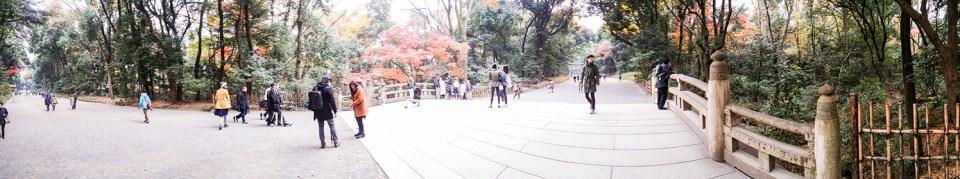 Meiji Shrine at Harajuku, Tokyo Japan.