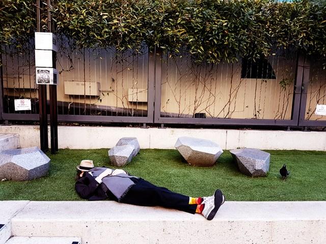 Ottie taking a nap in Perth Australia.