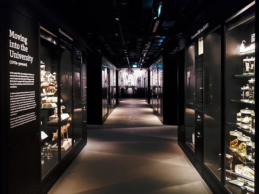 Corridor at Lee Kong Chian Natural History Museum.