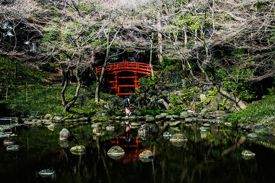 Otowa no Taki at Koishikawa Korakuen, Tokyo Japan.