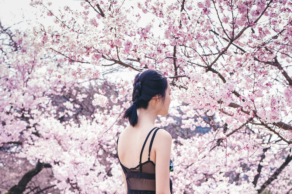 #OOTD at 新宿御苑桜 Cherry Blossoms in Shinjuku Gyoen.