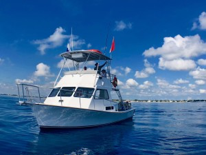 Scuba Diving Charters South Florida Marin