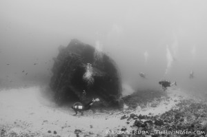 Palm Beach Wreck Diving