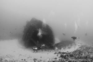 Palm Beach Wreck Diving