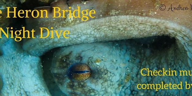 Blue Heron Bridge Night Dive: November 26th