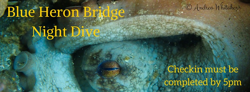 Blue Heron Bridge Night Dive: November 12th