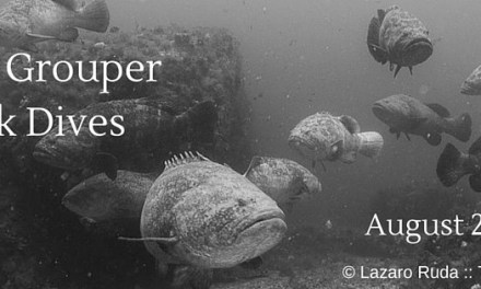 2-Tank Goliath Grouper Wreck Dives Aboard Sirena