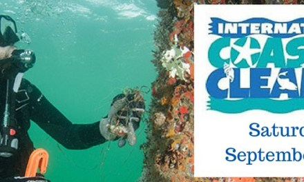 2016 International Coastal Cleanup