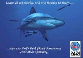 Shark Awareness Specialty